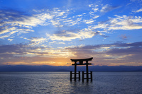 滋賀県 白髭神社大鳥居