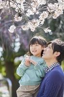 花見をする日本人親子