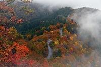 滋賀県  小入峠