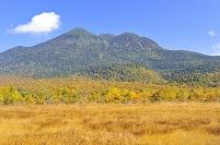 福島県 尾瀬 下田代から望む紅葉の燧岳と青空