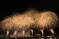 秋田県 夏の全国花火競技大会