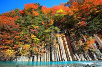 岩手県 八幡平・松川渓流 玄武岩と紅葉