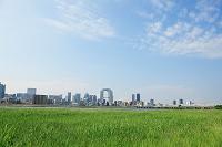 大阪府 淀川から見る大阪