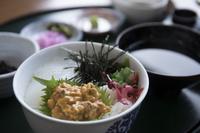 熊本県 天草 ウニ丼