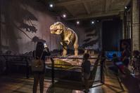 イギリス ロンドン自然史博物館