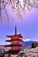 山梨県 桜と富士浅間神社の忠霊塔と富士山