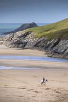イギリス 浜を歩く馬