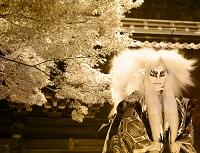 カエデと白獅子 歌舞伎