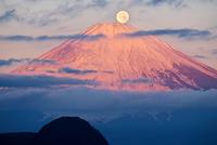 神奈川県 明神ヶ岳より紅富士と満月