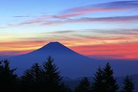 静岡県 山伏岳より望む夜明けの富士山と朝焼け雲