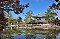奈良県 東大寺の鏡池