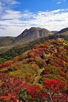 大分県 竹田市 九重山の紅葉と三俣山