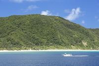 沖縄県 慶良間諸島 阿嘉島 ニシ浜