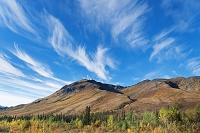 カナダ 秋のトゥームストーン準州立公園 ポプラの紅葉