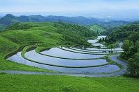 熊本県 扇の棚田