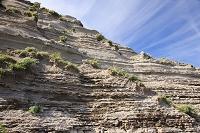 北海道 風化した岩