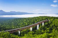 北海道 三国峠から眺望松見大橋と森