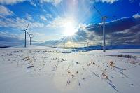 北海道 稚内市 風車
