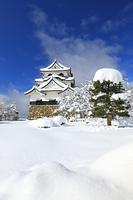 滋賀県 彦根城 雪晴れの本丸と天守閣