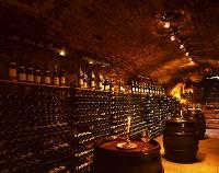 フランス ブルゴーニュ ワインショップ
