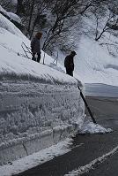 新潟県 雪国の除雪された道路の雪壁の雪下ろし