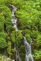 長野県 湯の丸高原 五郎の滝