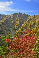 長野県 爺ケ岳中腹の紅葉と岩小屋沢岳