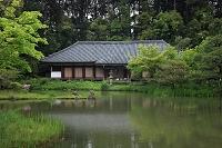 京都府 浄瑠璃寺・阿弥陀堂