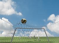 サッカーをするウサギ
