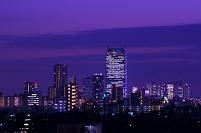 東京都 池袋と新宿暮色