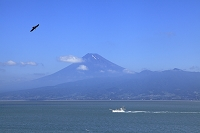 静岡県 富士山と駿河湾と船