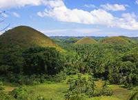 フィリピン ボホル島