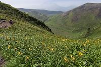 秋田県 駒ケ岳 横岳馬の背より馬場の小路(ムーミン谷)を望む