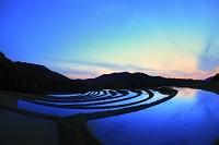 京都府 夕暮れ時の嵯峨樒原の円形棚田