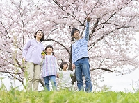 桜の咲く土手に立つ家族