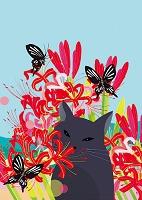 猫と花景9月