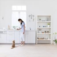 キッチンに立つ日本人女性とミニチュアダックス