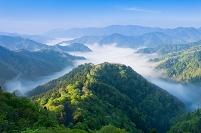 滋賀県 新緑と雲海の小入峠