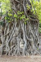 タイ ワットマハタート