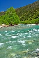 長野県 梓川の流れ 奥上高地徳沢付近