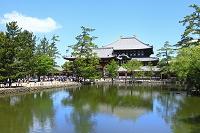 奈良県 東大寺 中門と大仏殿と鏡池