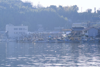 兵庫県 たつの市 室津港