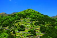 徳島県 東祖谷・落合集落 急斜面の山村
