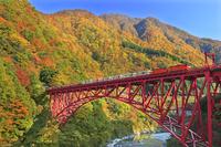 日本 富山県 紅葉の黒部峡谷と黒部峡谷トロッコ電車