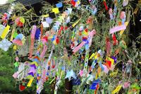 京都府 七夕の笹飾り
