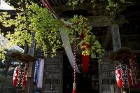 埼玉県 秩父第20番札所 岩之上堂 お手綱と本堂
