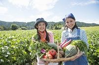 畑で野菜を見せる日本人女性