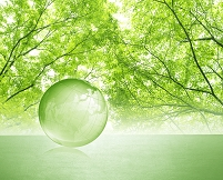 新緑と地球