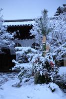 京都 光明寺 雪