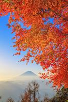 山梨県 櫛形山林道より紅葉と富士山朝景